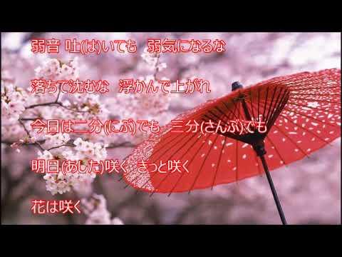 明日咲く(松村和子)♪♪カバー