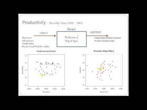 Measuring the Effect of Workers' Health on Work Productivity