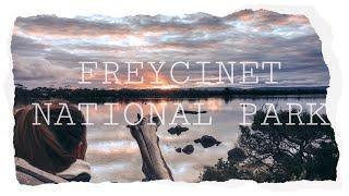 Atemberaubende Aussicht über den Freycinet Nationalpark // Tasmanien // Work and Travel Australien