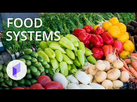 Healthy Urban Food Systems: Planning Retail Facilities - Introduction