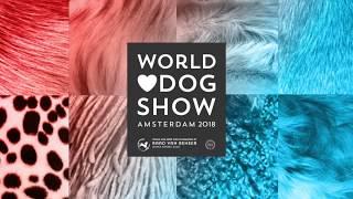 World Dog Show 2018: Best Puppy In Show. 3rd: Basset Hound DeuceCoupe Marquesa
