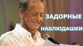 Михаил Задорнов - Задорные наблюдашки