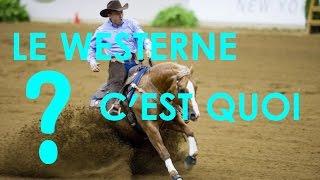 #5 Le Western Pour Les Nul Expliquation simple (Histoire, Discipline...)