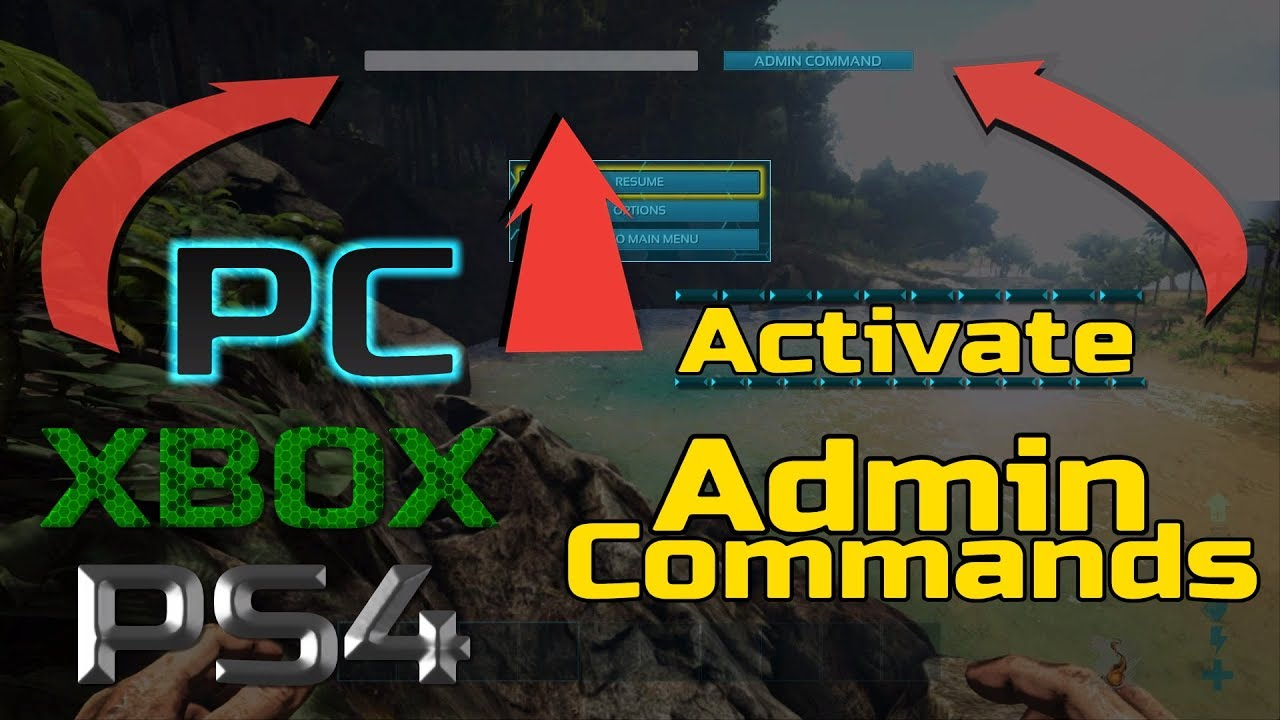 Ark: how to Activate Admin Commands *for all consoles*