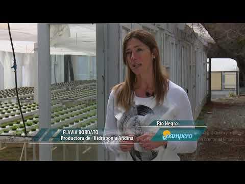 Hidroponia Para Producir Verduras En El Sur