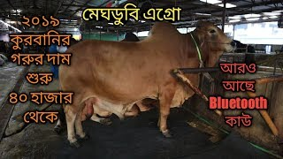 gorur haat 2019 update  | gabtoli gorur haat 2019 | Meghdubi agro bosila | The Taste Ranger