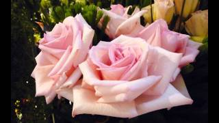 Bridal chorus by Wagner - here comes the bride - piano and flute instrumental wedding music