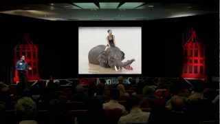 The Elephant, The Rider and You: Stef Frenzl at TEDxMontlakeCut