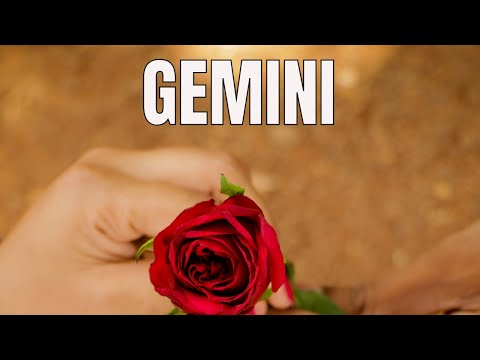 GEMINI~SURPRISES & THE