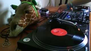 Supersharp Ragga Jungle Mix 1991-2014, 100% Vinyl