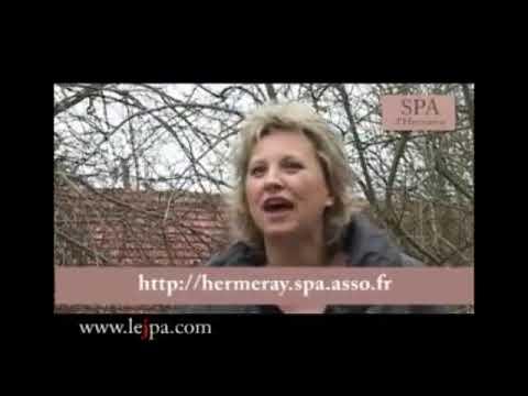 Refuge Spa D Hermeray Youtube