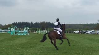 Alfie XI and Craig Mor Tom at Withington Pony Trial 2015