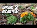 Cultivo de Hierbas AROMÁTICAS en Espiral