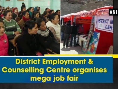 District Employment & Counselling Centre organises mega job fair - Jammu and Kashmir News