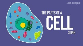 Download THE PARTS OF A CELL SONG | Science Music Video Mp3 and Videos