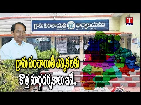 Election Commission New Guidelines for Gram Panchayat Elections | TNews  Telugu