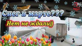 Думали весна, не тут то было))) Башкирский снежный синдром... $688