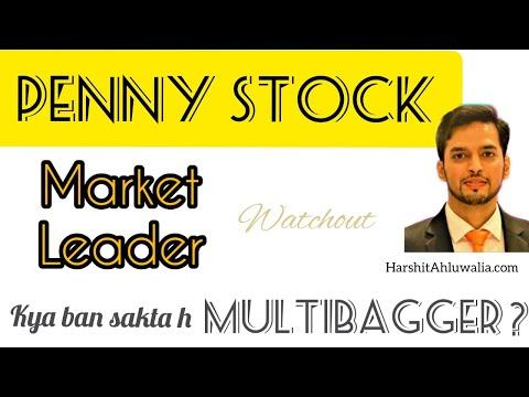 Multibagger? Penny stock   Market Leader