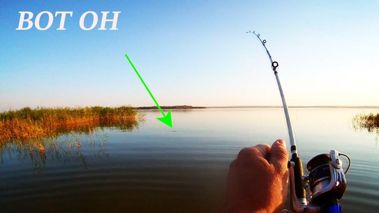 ловля рыбы 2017 видео