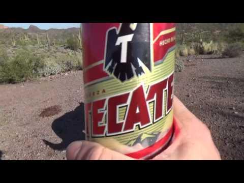 Tecate Beer Review