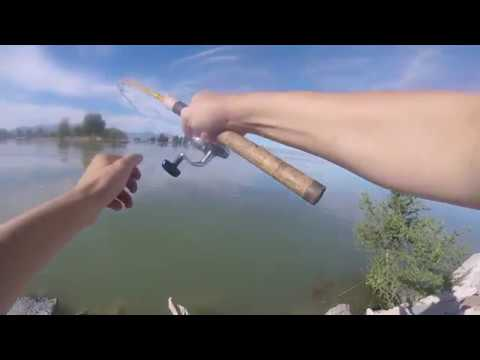 How I Catch Cat-fish At Utah Lake