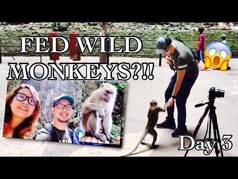MALAYSIA VACATION WITH WILD MONKEYS! | Batu Caves | Kuala Lumpur, Malaysia | VLOG#32