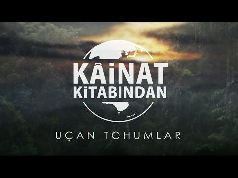 Kainat Kitabından - Uçan Tohumlar (Yedinci Şua Belgeseli) thumbnail