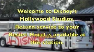 walt disney world bus transportation hollywood studios arrival