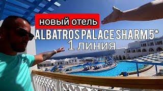 Египет Новый Albatros Palace Sharm 5