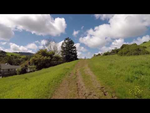 Bay Area Ridge Trail Run, Novato, CA