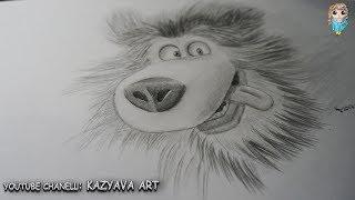 Как нарисовать медведя карандашом из мультфильма