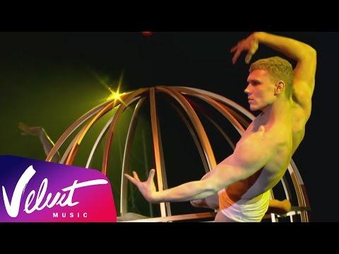 """Live: Винтаж - Деревья (""""Запретный мир"""", 2014 г.) thumbnail"""