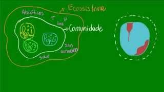 Introdução a ecologia - Ecologia - Biologia