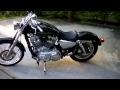 2004 Harley Davidson Sportster 883 Custom