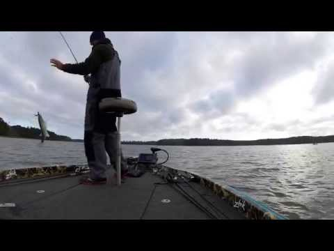 iON: Jason Meninger Day 3 & 4