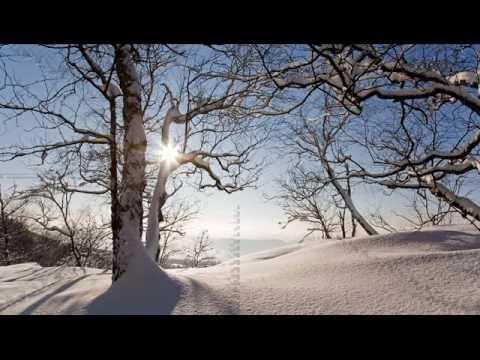 Blasmusik  -  Polka  -  Böhmischer Traum -  Video