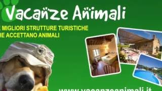 Vascellero Club Resort - VacanzeAnimali.it