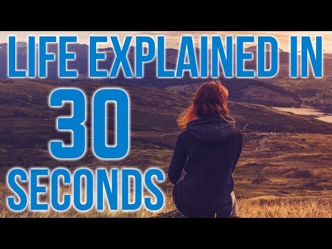 Life Explained In 30 Seconds