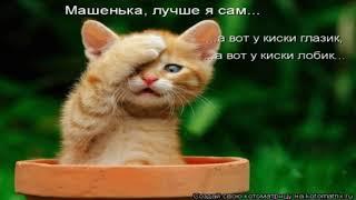 Очешуительные картинки с котами №3
