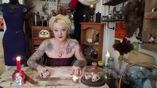 White in color magic and witchcraft THE TAXIDERMY WITCH