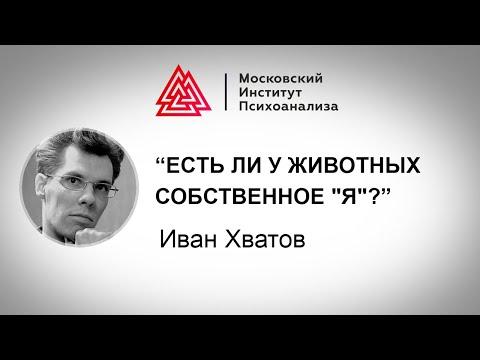 Лекция Ивана Хватова