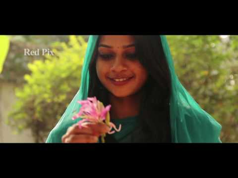 Tamil Album Song - Valentine's Day  - Red Pix Music