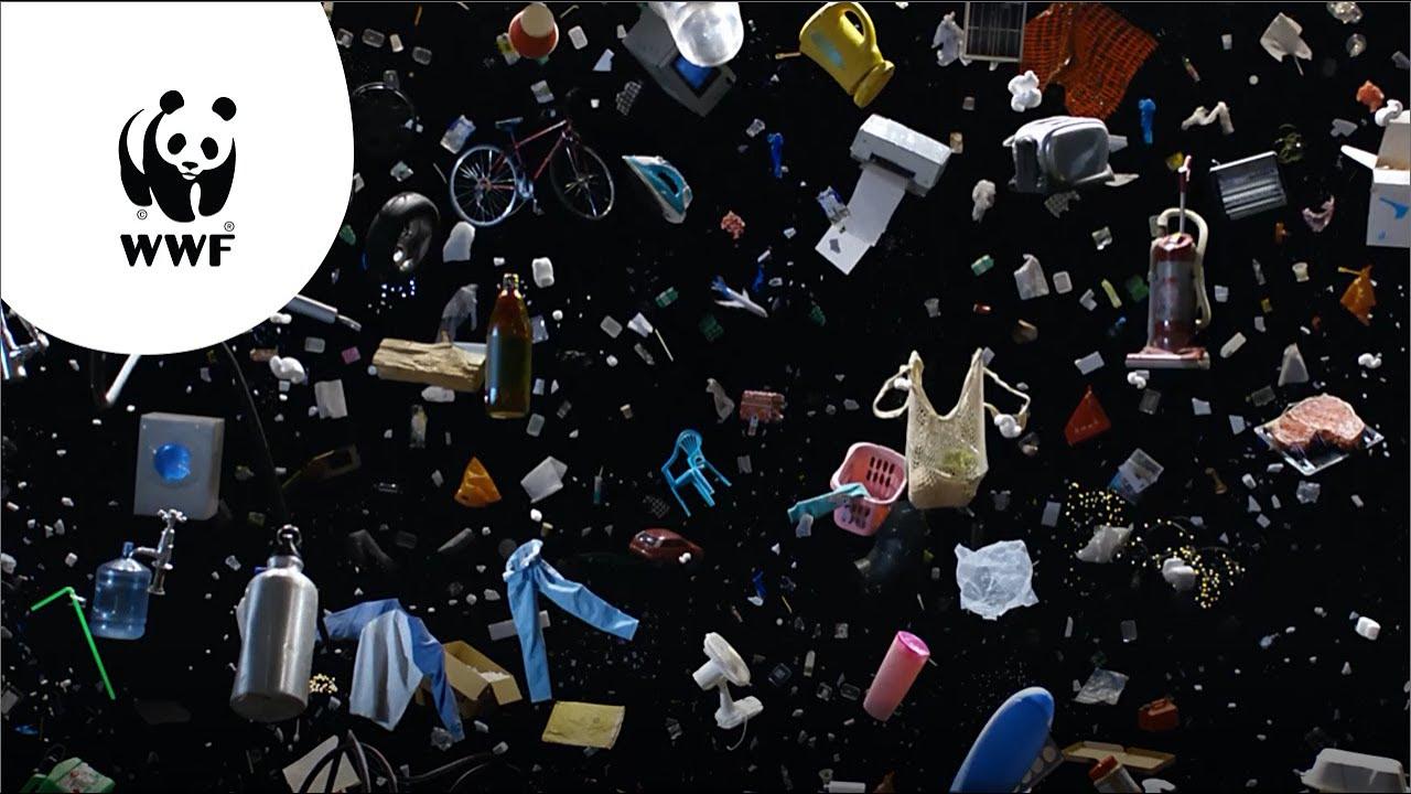 WWF: Kom in actie voor jouw wereld