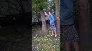 Дама пилит дерево. Мат.