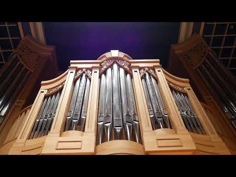 "North German Baroque Organ in the ""Land of Water Falls"""