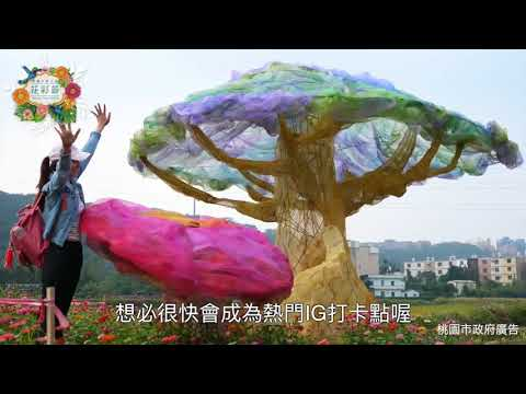 2017桃園花彩節 龍潭場搶先看
