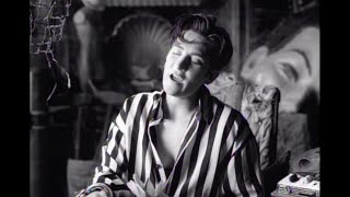 k.d. lang - Constant Craving (Official Music Video)