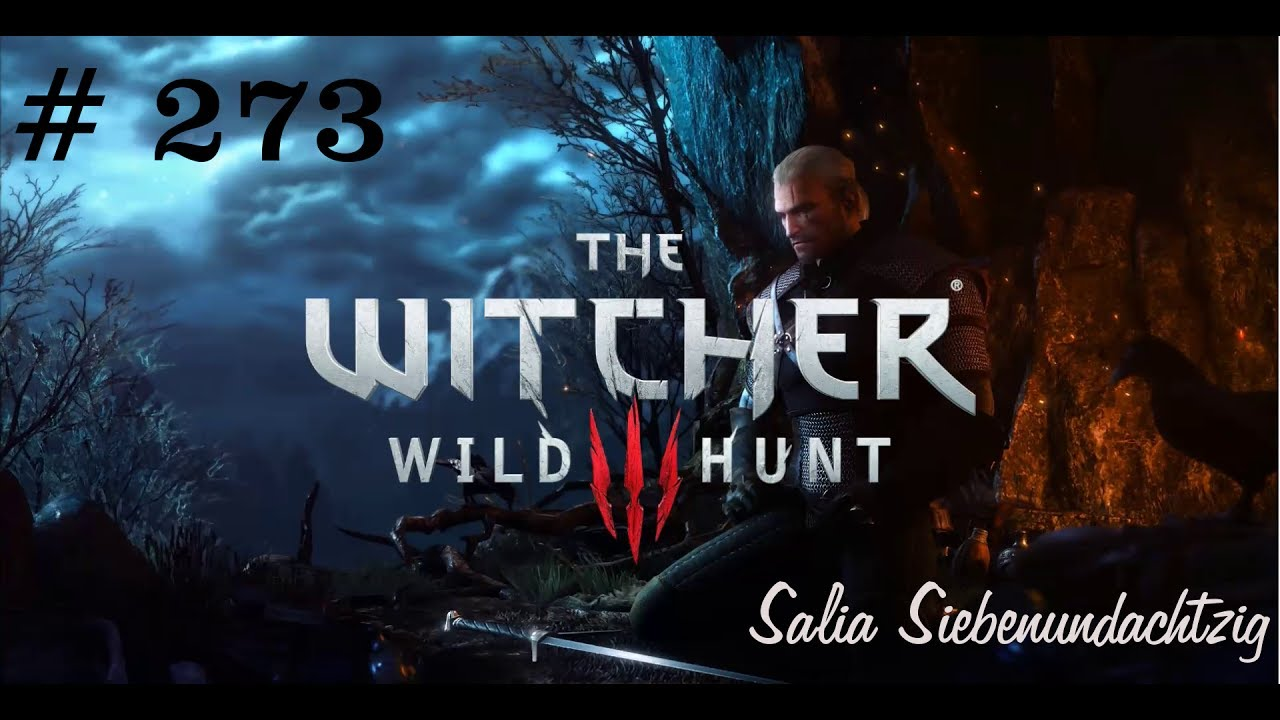 Harte Zeiten Lets Play The Witcher 3 273 Youtube