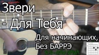 Звери - Для тебя (Видео урок) Как играть на гитаре. Для начинающих, Без Баррэ