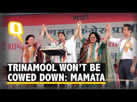 TMC Won't Be Cowed Down: Mamata Banerjee
